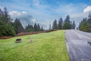 627 Rainier Lane, Port Ludlow, WA 98365 (#1086268) :: Ben Kinney Real Estate Team