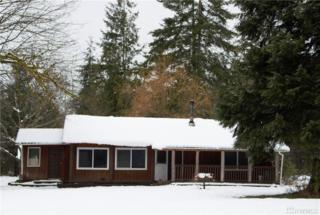 271 W Maple Rock Rd, Matlock, WA 98560 (#1086441) :: Ben Kinney Real Estate Team