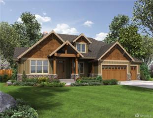 9 263rd St Ct E, Spanaway, WA 98387 (#1086535) :: Ben Kinney Real Estate Team