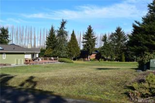 0 Hurricane Ridge Dr, Sequim, WA 98382 (#1086537) :: Ben Kinney Real Estate Team