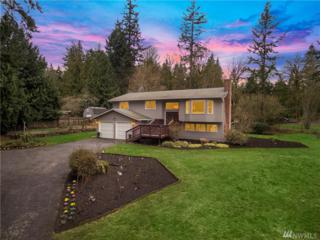 15915 179th Place NE, Woodinville, WA 98072 (#1086654) :: Ben Kinney Real Estate Team