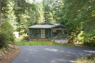 371 N Napilikai Dr, Lilliwaup, WA 98555 (#1086663) :: Ben Kinney Real Estate Team