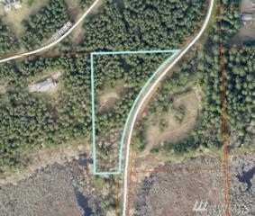 306-XX 290Th Ave Se (Lot B), Black Diamond, WA 98010 (#1086726) :: Ben Kinney Real Estate Team