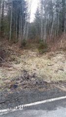 0 Highland Valley Rd, Morton, WA 98356 (#1086819) :: Ben Kinney Real Estate Team