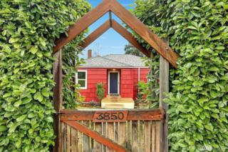 3850 NE 95th St, Seattle, WA 98115 (#1086831) :: Ben Kinney Real Estate Team