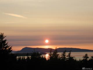 221 Snowberry Lane, Orcas Island, WA 98245 (#1086922) :: Ben Kinney Real Estate Team