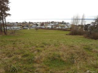 2-xxx Scurlock Rd, Freeland, WA 98249 (#1086954) :: Ben Kinney Real Estate Team