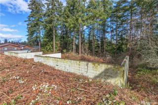 61 Lylus Lane, Port Hadlock, WA 98339 (#1086990) :: Ben Kinney Real Estate Team