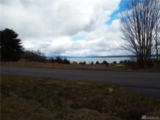 1578 Crestview Dr, Camano Island, WA 98282 (#1087029) :: Ben Kinney Real Estate Team
