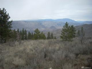 0 Lot 31, Mountain Spring Road, Orondo, WA 98843 (#1087110) :: Ben Kinney Real Estate Team