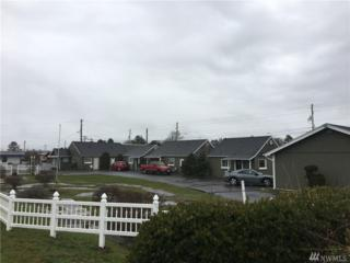 1200 Pacific Ave S 1-7, Long Beach, WA 98631 (#1087111) :: Ben Kinney Real Estate Team