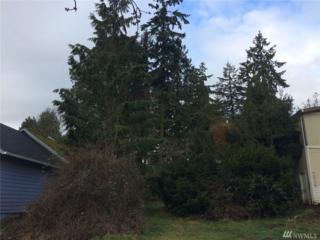 18751 4th Ave NE, Suquamish, WA 98392 (#1087194) :: Ben Kinney Real Estate Team