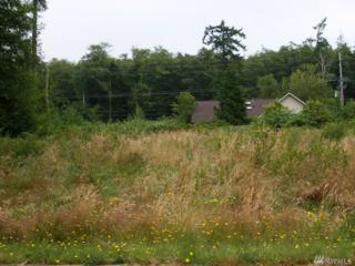 0-Lot 26 Virginia Ave, Coupeville, WA 98239 (#1087221) :: Ben Kinney Real Estate Team