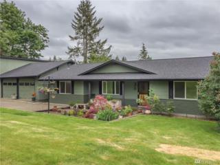 2110 S Silverlake Rd, Castle Rock, WA 98611 (#1087352) :: Ben Kinney Real Estate Team