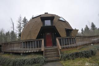 17244 Jonas Hill Lane SE, Rainier, WA 98576 (#1087361) :: Ben Kinney Real Estate Team
