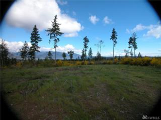 0 Lot 5 Pioneer Rd NW, Seabeck, WA 98380 (#1087409) :: Ben Kinney Real Estate Team