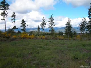 0 Lot 6 Pioneer Rd NW, Seabeck, WA 98380 (#1087428) :: Ben Kinney Real Estate Team