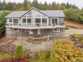 2928 Teal Lake Rd, Port Ludlow, WA 98365 (#1087432) :: Ben Kinney Real Estate Team