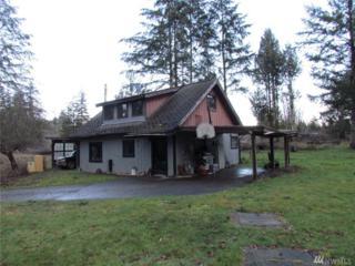353 E Agate Loop Rd, Shelton, WA 98584 (#1087447) :: Ben Kinney Real Estate Team