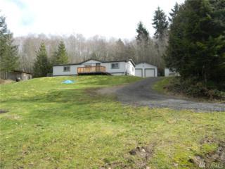 330 E Cedarbrook Lane, Belfair, WA 98528 (#1087508) :: Ben Kinney Real Estate Team