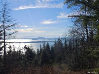 0 0000 Chuckanut Ridge Dr, Bow, WA 98232 (#1087558) :: Ben Kinney Real Estate Team