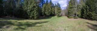 5655 NE Tolo Rd, Bainbridge Island, WA 98110 (#1087572) :: Ben Kinney Real Estate Team
