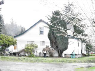 31316 State Route 20, Lyman, WA 98263 (#1087818) :: Ben Kinney Real Estate Team