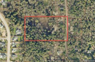 105-XX 174th Ave SE, Renton, WA 98059 (#1087839) :: Ben Kinney Real Estate Team