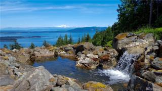 301 Falls Dr, Orcas Island, WA 98245 (#1087920) :: Ben Kinney Real Estate Team