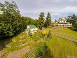 4807 Rose Ave NE, Bainbridge Island, WA 98110 (#1087951) :: Ben Kinney Real Estate Team