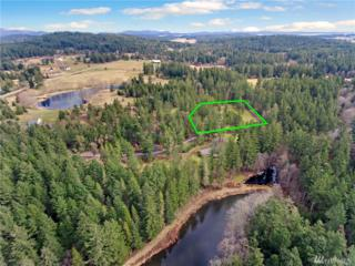 5 Lot 5 Lake Edna Estates, Friday Harbor, WA 98250 (#1087984) :: Ben Kinney Real Estate Team
