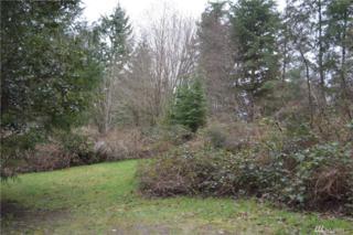 1-XXX Hyak Wy, Fox Island, WA 98333 (#1088197) :: Ben Kinney Real Estate Team