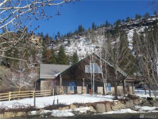 384 Tunk Creek Rd, Riverside, WA 98849 (#1088262) :: Ben Kinney Real Estate Team