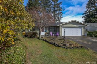 2717 Natalie Lane, Steilacoom, WA 98388 (#1088349) :: Ben Kinney Real Estate Team