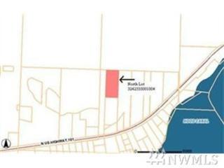 369-XX N Us Highway 101, Lilliwaup, WA 98555 (#1088379) :: Ben Kinney Real Estate Team