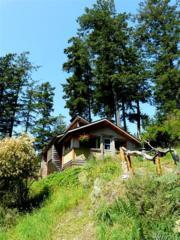 276 Elderberry Lane, Orcas Island, WA 98245 (#1088399) :: Ben Kinney Real Estate Team