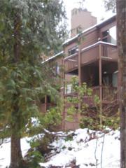 10500 Mount Baker Hwy #205, Glacier, WA 98244 (#1088404) :: Ben Kinney Real Estate Team