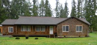 35812 Allen Rd S, Roy, WA 98580 (#1088435) :: Ben Kinney Real Estate Team