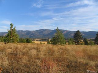 1 Hidden Valley Rd, Cle Elum, WA 98922 (#1088509) :: Ben Kinney Real Estate Team
