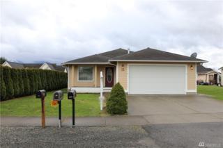 209 Noble St, Sumas, WA 98295 (#1088571) :: Ben Kinney Real Estate Team
