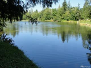 19401 Whiteman Cove KP, Longbranch, WA 98351 (#1088690) :: Ben Kinney Real Estate Team