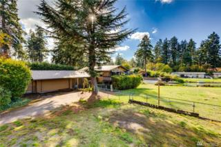 17112-6th Avenue Ct S, Spanaway, WA 98387 (#1088754) :: Ben Kinney Real Estate Team