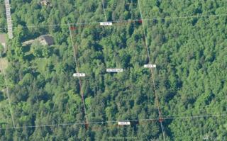 0 Stinging Nettles Lane, Camano Island, WA 98282 (#1088774) :: Ben Kinney Real Estate Team