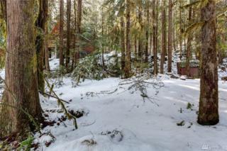7043 Olympus Wy, Glacier, WA 98244 (#1088833) :: Ben Kinney Real Estate Team