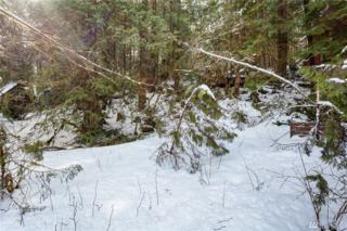 7051 Olympus Wy, Glacier, WA 98244 (#1088845) :: Ben Kinney Real Estate Team