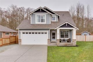 7125 289th Place NW, Stanwood, WA 98292 (#1088851) :: Ben Kinney Real Estate Team