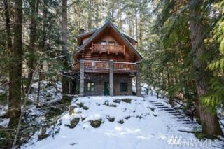 7047 Olympus Wy, Glacier, WA 98244 (#1088857) :: Ben Kinney Real Estate Team