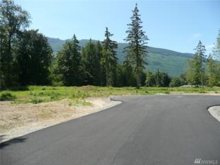 0 Lot 19 Coyote Springs Lane, Sedro Woolley, WA 98284 (#1088868) :: Ben Kinney Real Estate Team