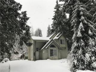 7044 Olympus Way, Glacier, WA 98244 (#1088902) :: Ben Kinney Real Estate Team