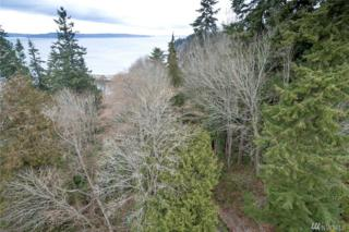 16-xxx 76th Ave W, Edmonds, WA 98026 (#1088920) :: Ben Kinney Real Estate Team